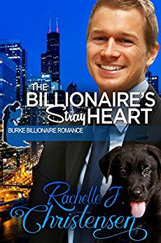 the-billionaires-stray-heart